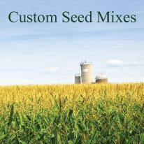 Custom Seed Mixes